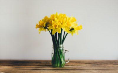 Porządkowanie garderoby na wiosnę – 10 kroków