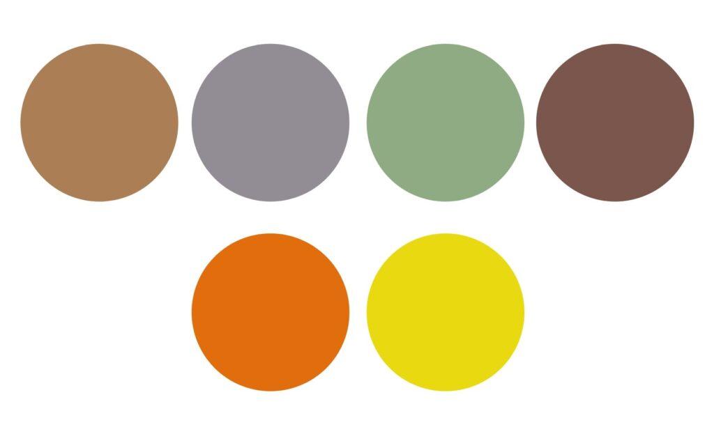 kolor w szafie